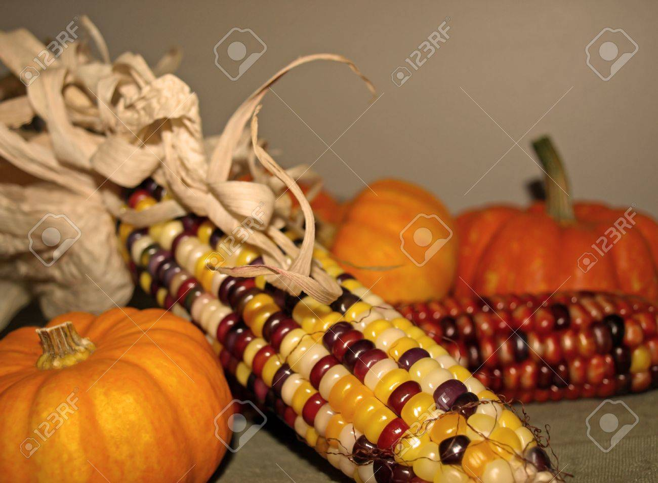 harvest decor of corn and autumn gourds stock photo 11011200 - Harvest Decor