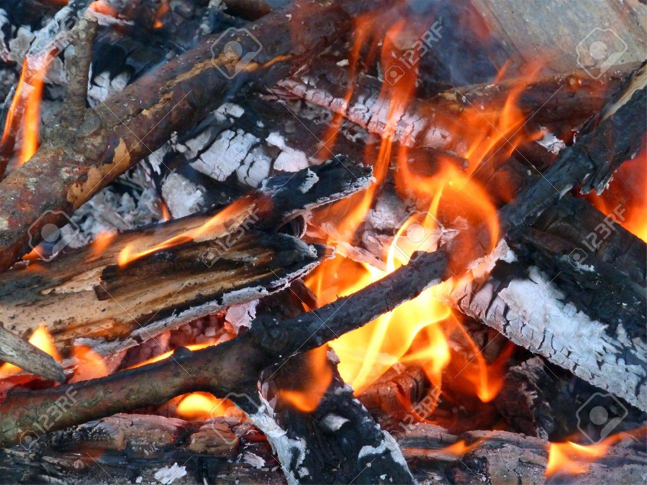 Close up of an outdoor fire burning Stock Photo - 11011217