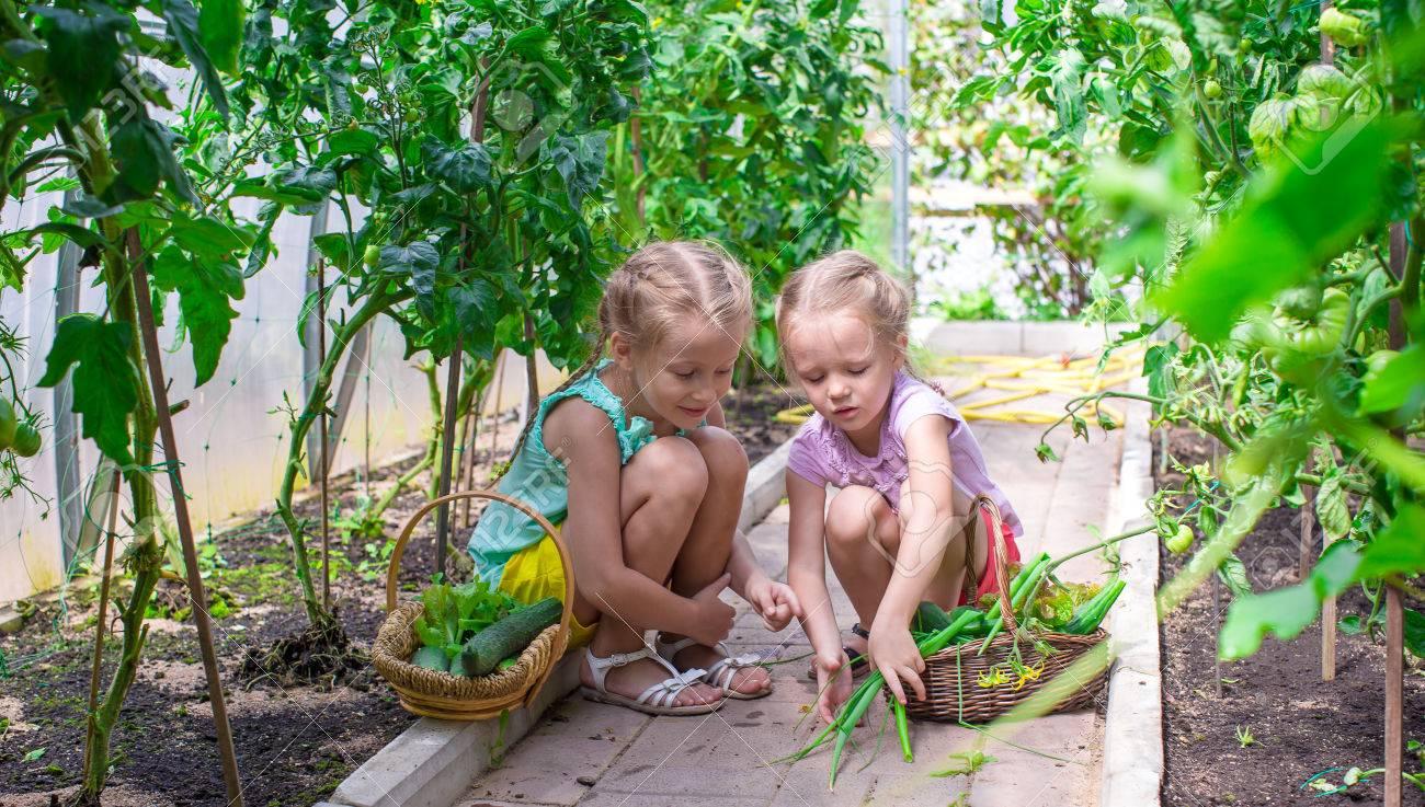 Cute Little Greenhouses Cute Little Girls Collect Crop