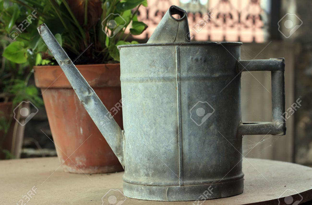 Aged metallic watering can on the garden table Stock Photo - 6392695