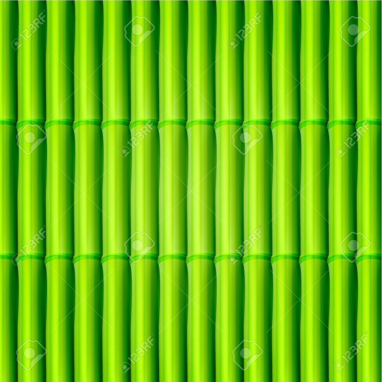 Vector bamboo background. Eps10 Stock Vector - 12763447