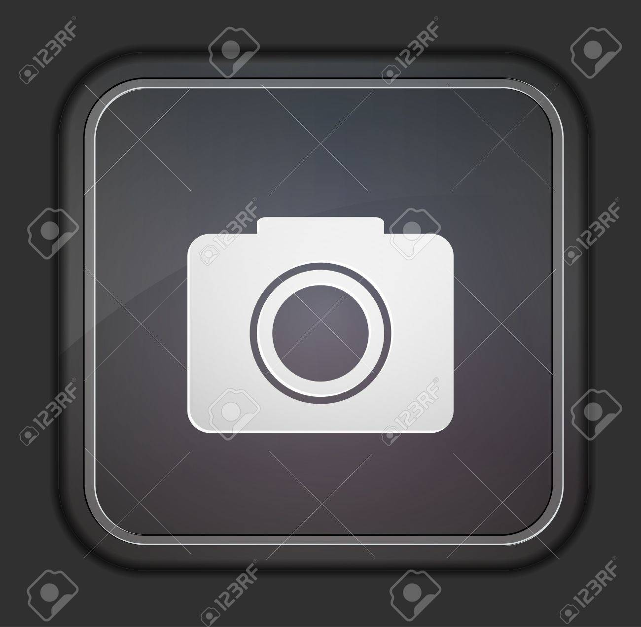 Vector version. Camera icon. Stock Vector - 14254155