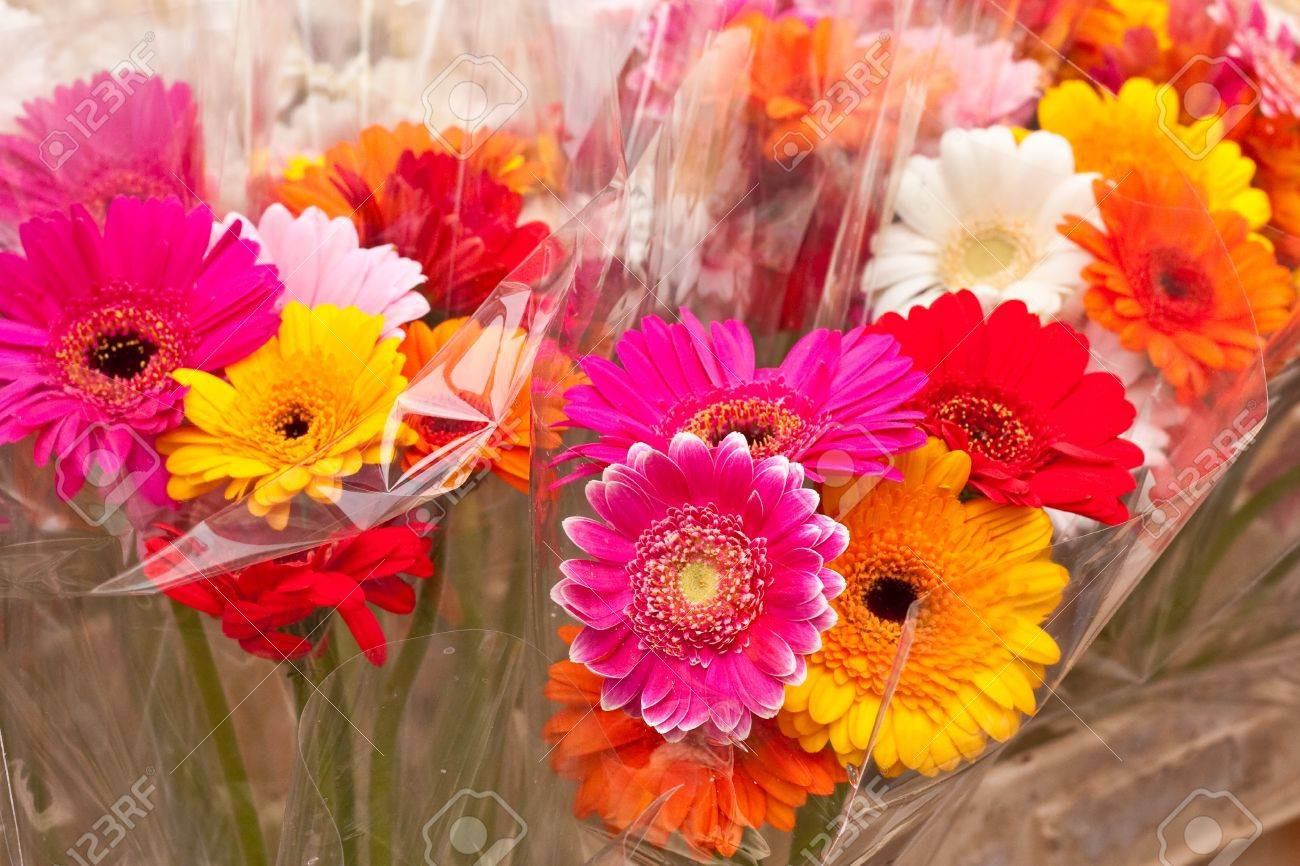 Bunches Of Colorful Flowers In Cellophane