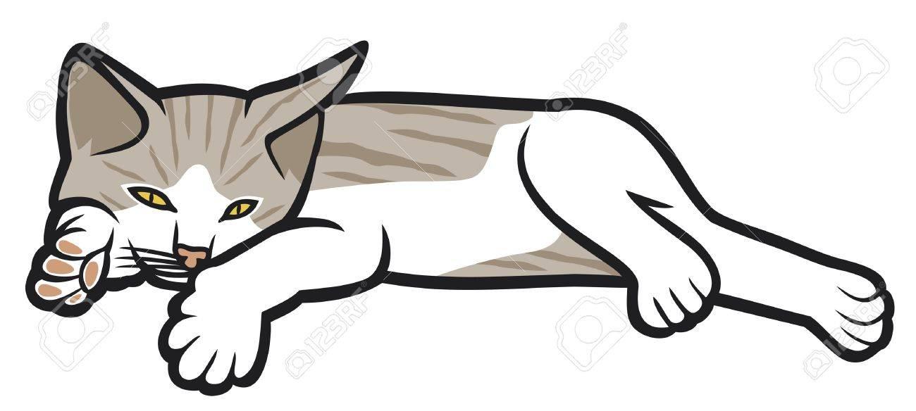 kitten lying on a white background (illustration of a cat, little kitten lying down) Stock Vector - 14761236