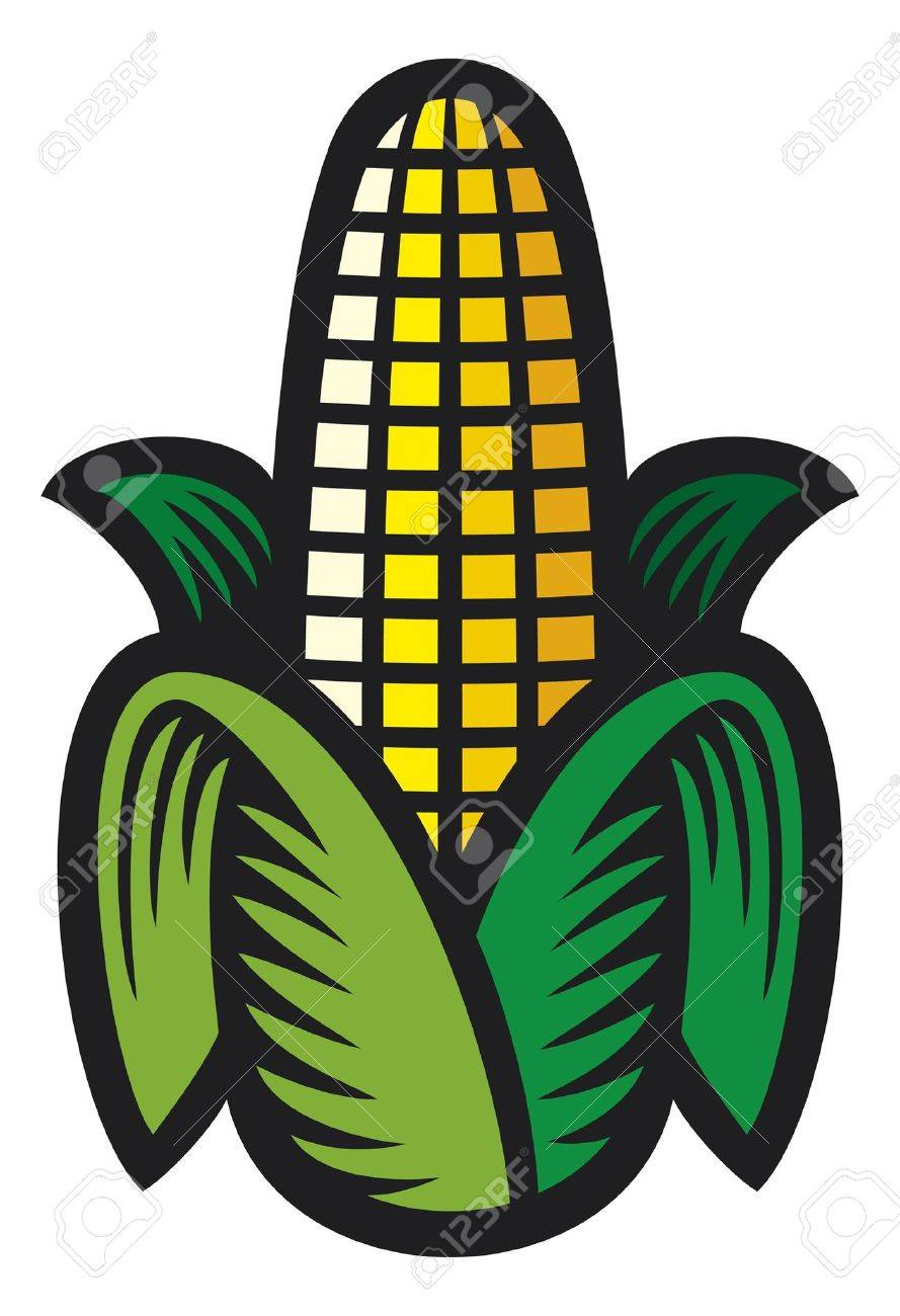Corn Stock Vector - 14836425