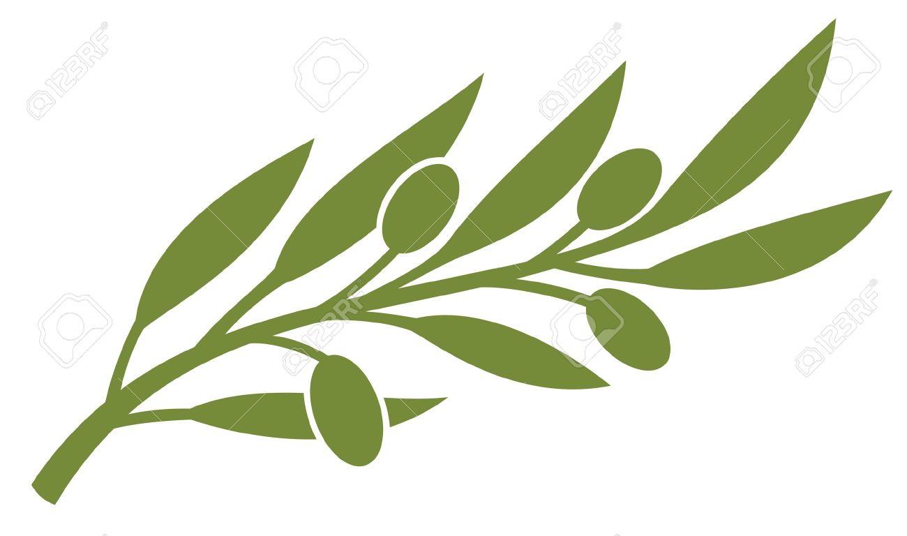 Olive branch olive symbol royalty free cliparts vectors and olive branch olive symbol stock vector 14836460 buycottarizona Choice Image