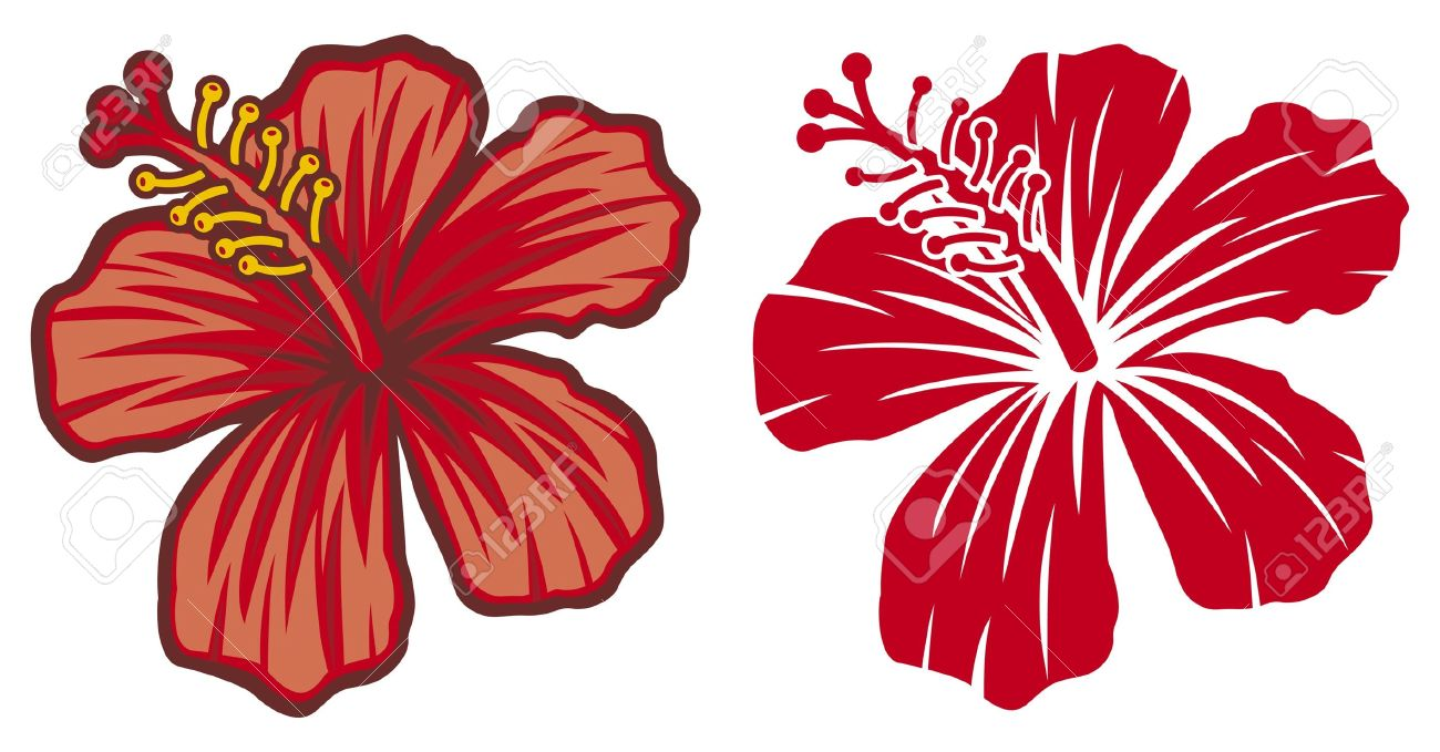 17 500 hibiscus flower cliparts stock vector and royalty free