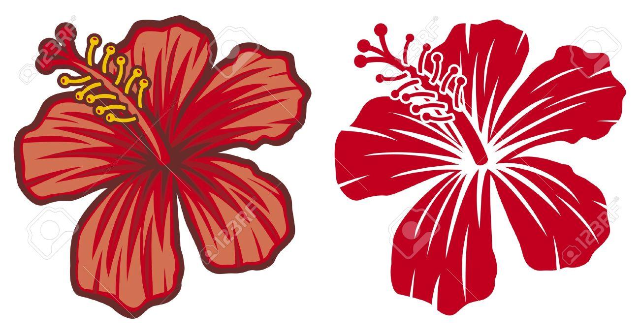 Hibiscus flower clipart image hibiscus flower - Hibiscus Flower Beautiful Red Hibiscus Flower