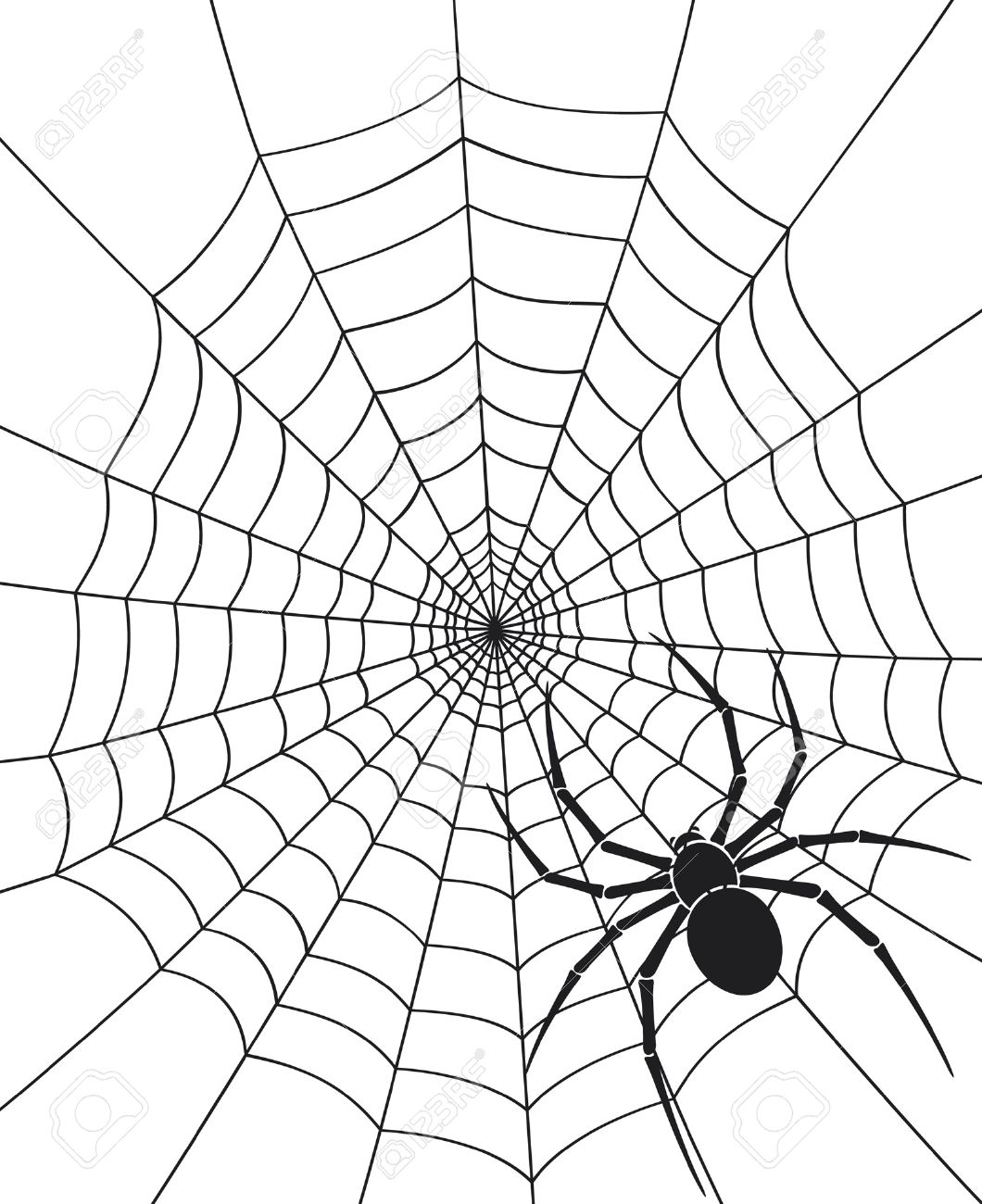 black spider and spider web Stock Vector - 14994140