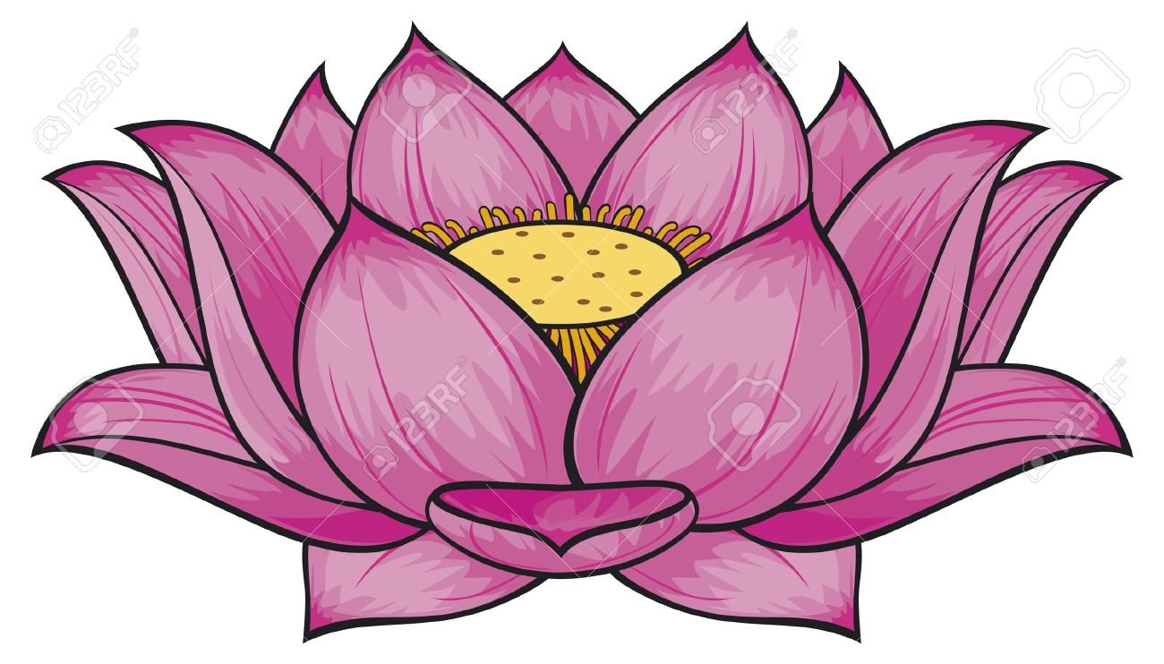 Lotus Flower Royalty Free Cliparts Vectors And Stock Illustration