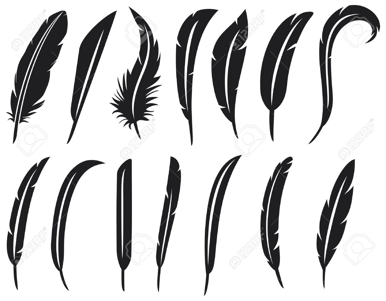 the collection of feathers feather collection, feather silhouette, feather set - 16096779