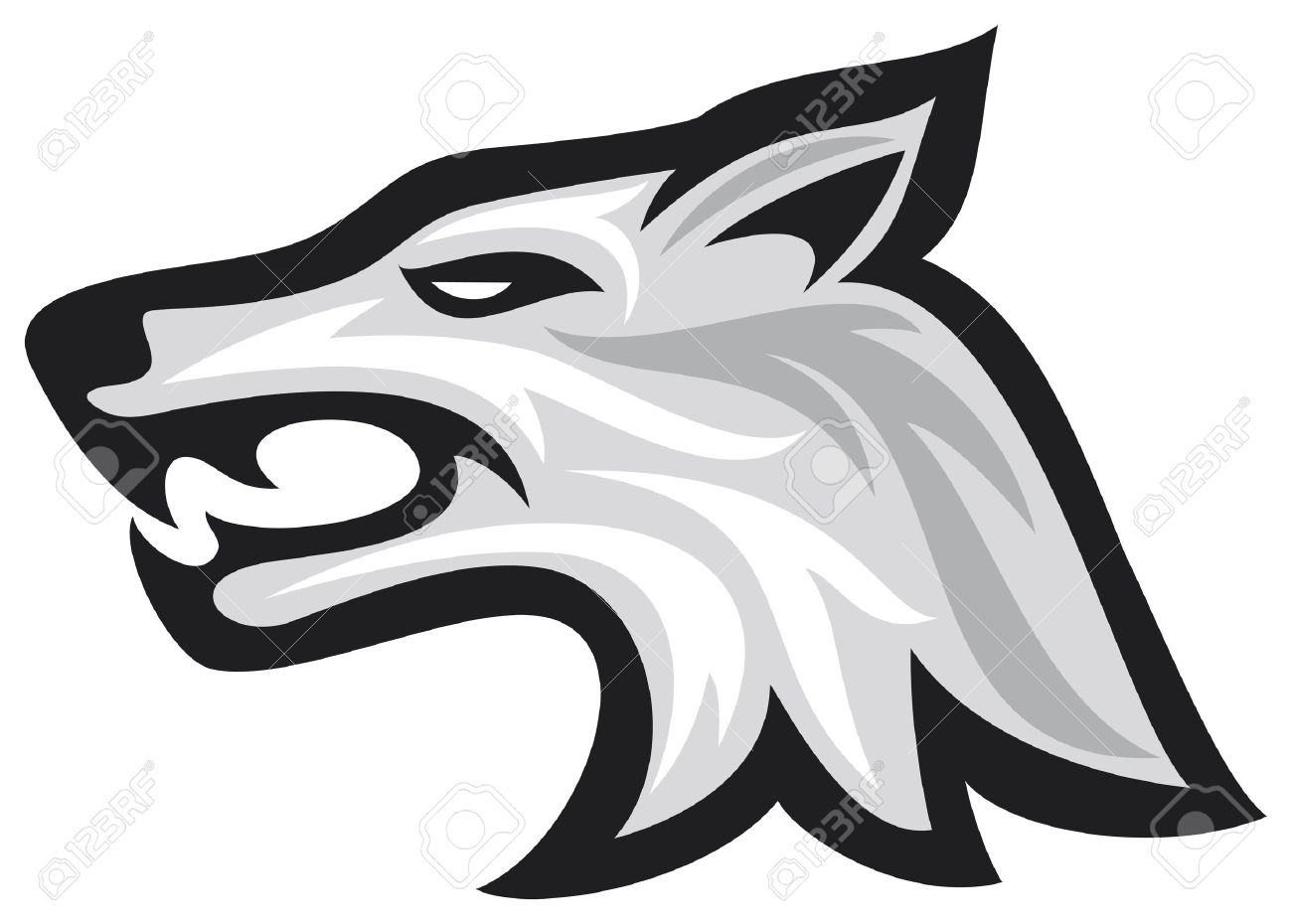 How To Draw A Gray Wolf Head: Vector Illustration Of Wolf Face Wolf Head