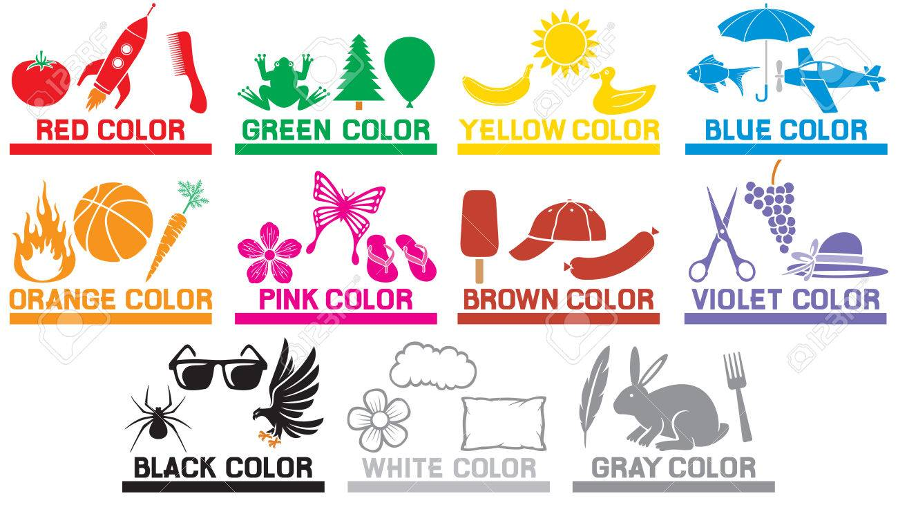 Learning The Colors For Kids (animals, Objects And Colors For ...