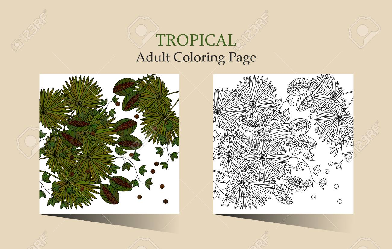 Adult Antistress Coloring Page Vector Cards With Tropic Plants