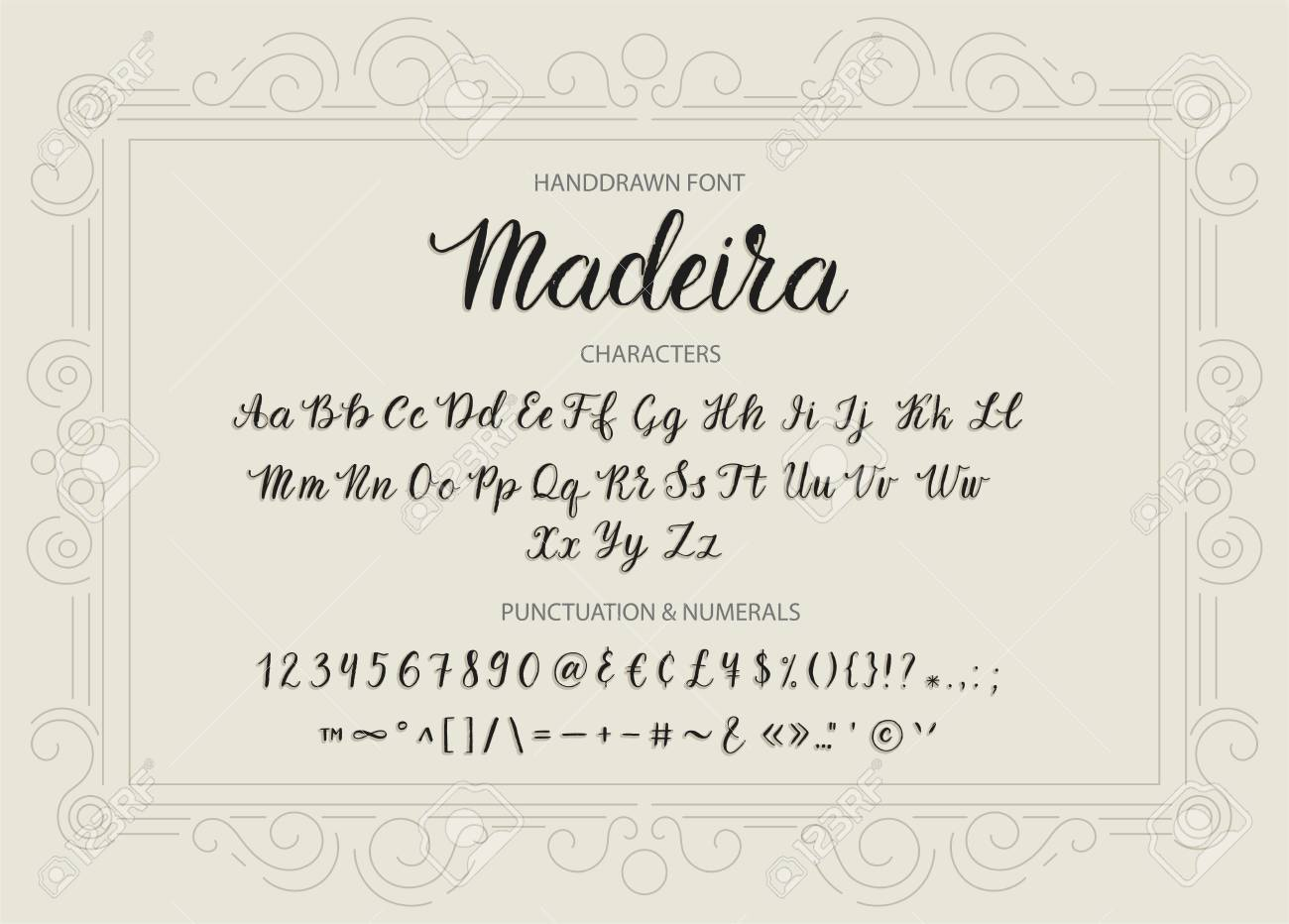 Handdrawn Vector Script font  Brush style textured calligraphy