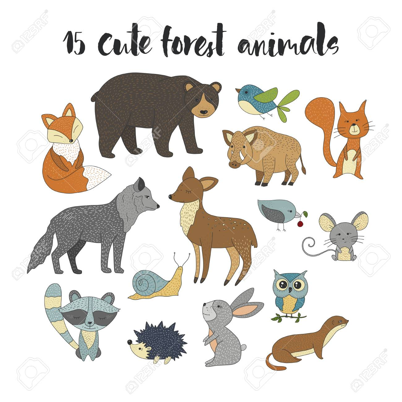 Big Set With Hand Drawn Vector, Forest, Animals Color On A White ...