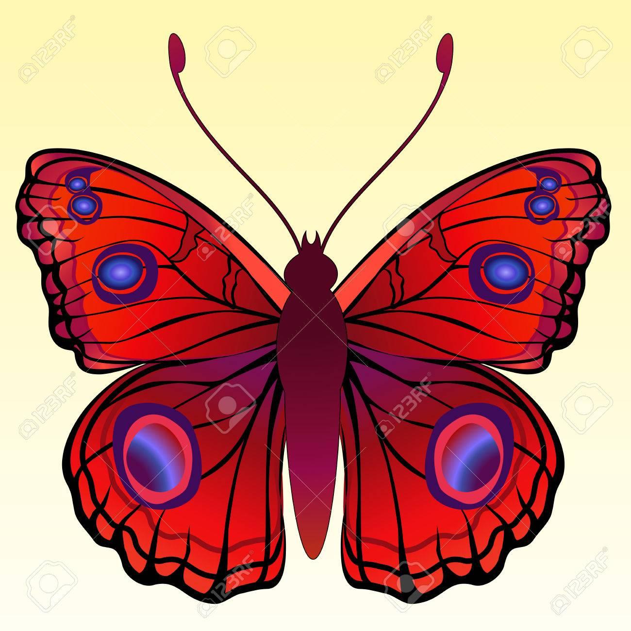 Ilustración De Mariposa Brightly Coloreado Detallada. Ilustraciones ...