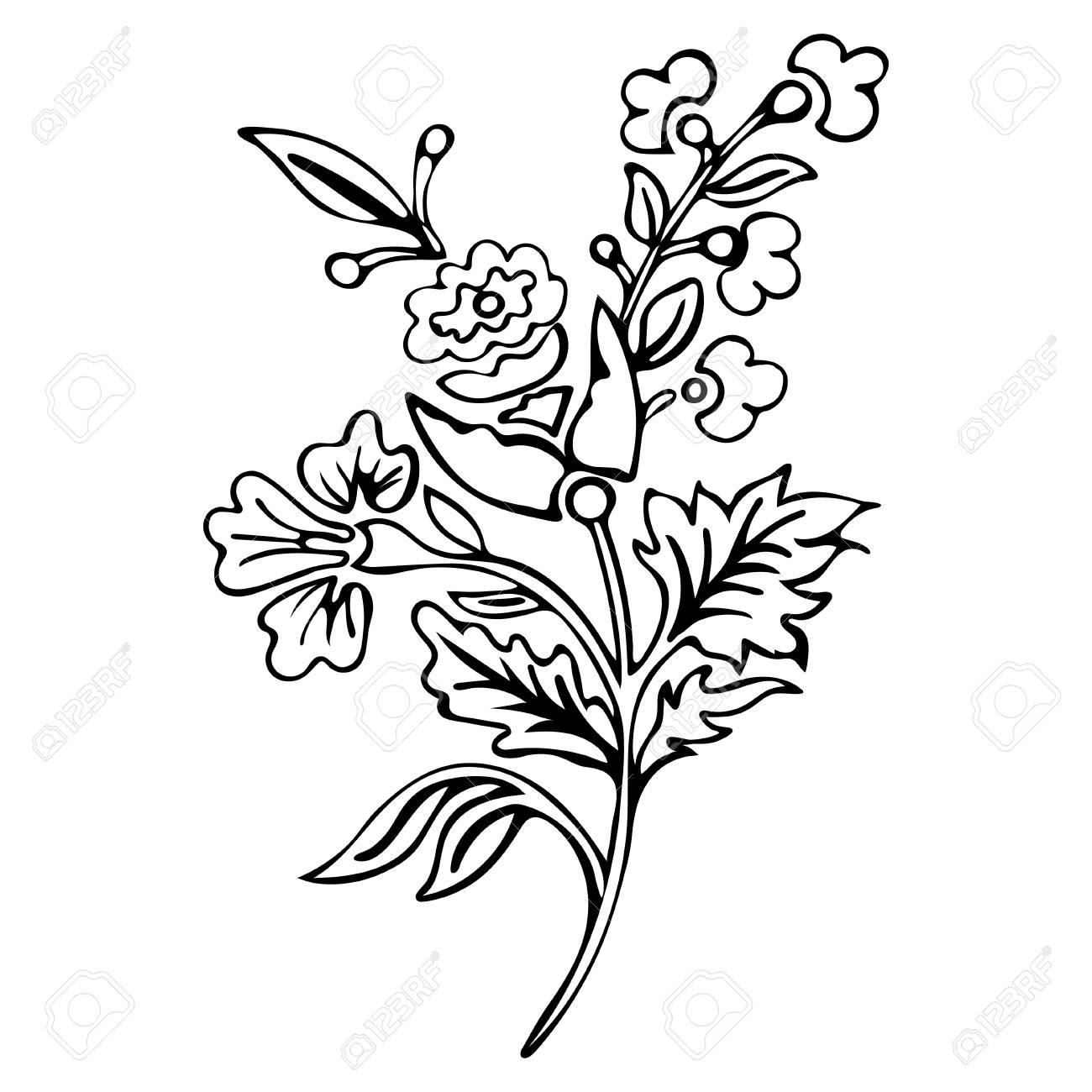 Flor Abstracta Flor De Fantasía Cuadros Para Colorear Bosquejo Monocromático Plantas De Doodle Ilustración Vectorial Blanco Y Negro
