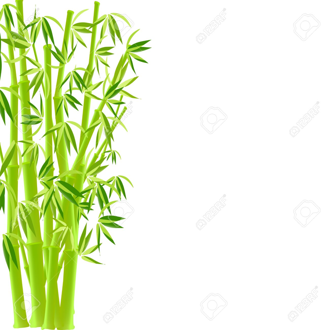 vector illustration of bamboo royalty free cliparts vectors and rh 123rf com bamboo vector images