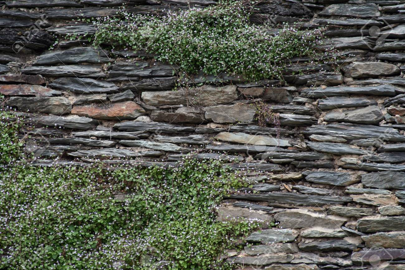 Rock wall Stock Photo - 7432089