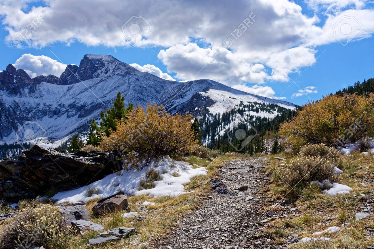 View From The Wheeler Peak Trail In Great Basin National Park Stock Photo Picture And Royalty Free Image Image 89423586