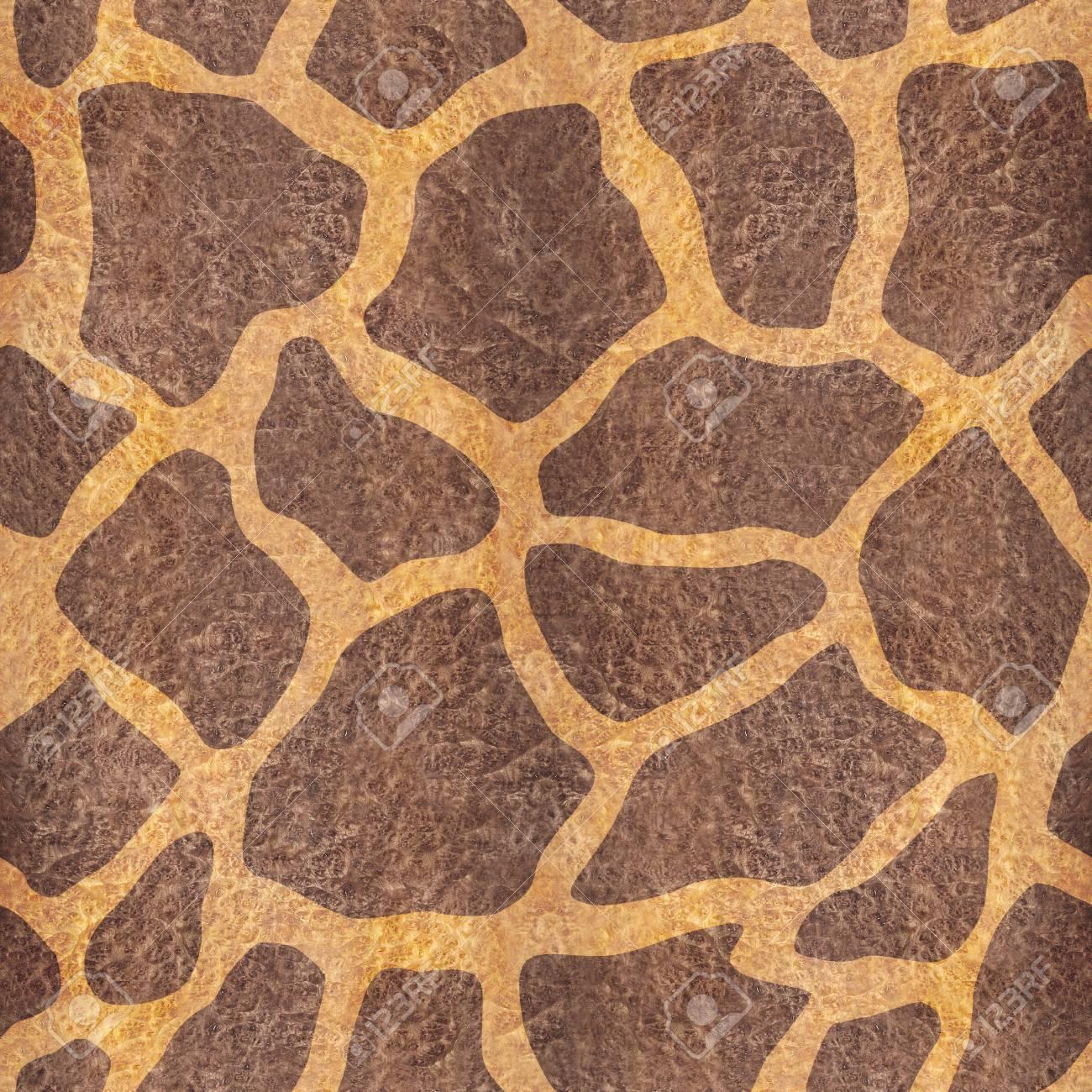 装飾的なキリン柄 シームレスな背景 カルパティア エルム ウッド テクスチャ の写真素材 画像素材 Image