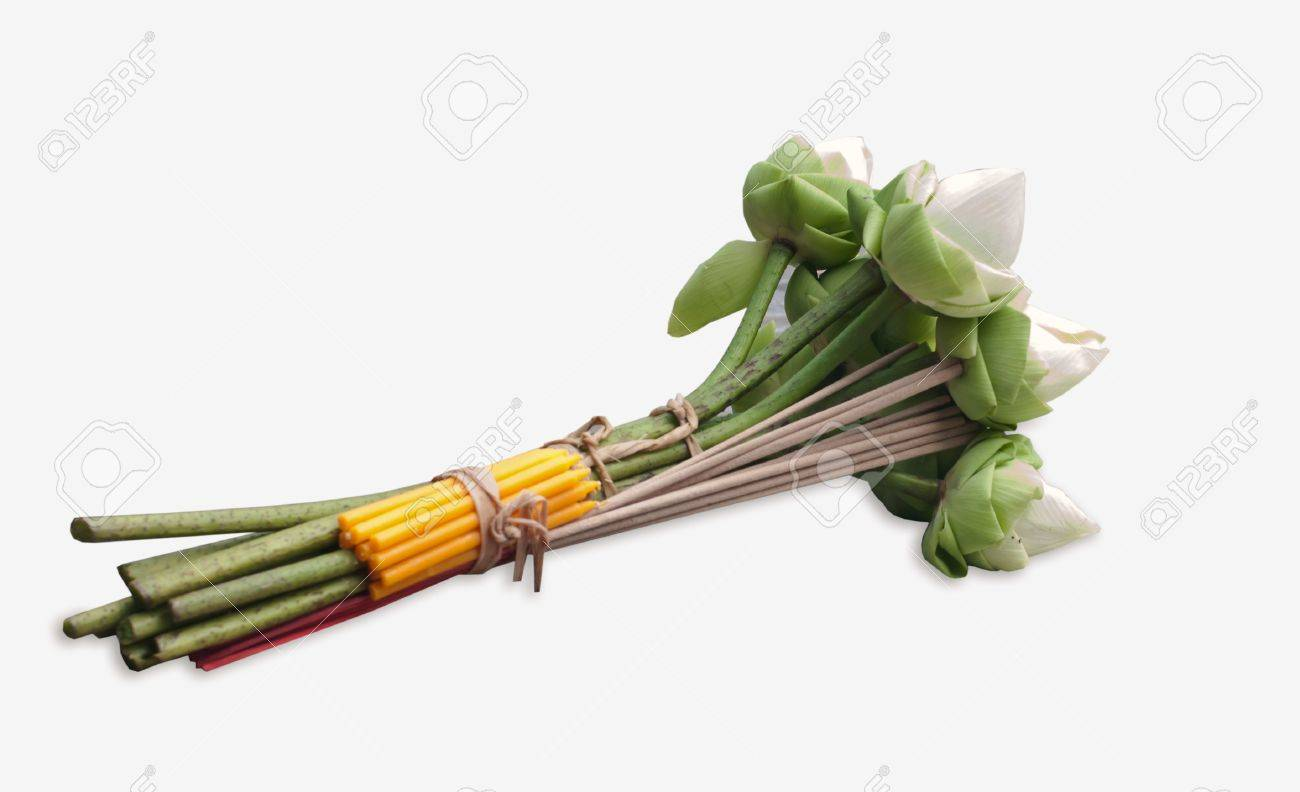 Flower for buddhist religious ceremony . - 11559242