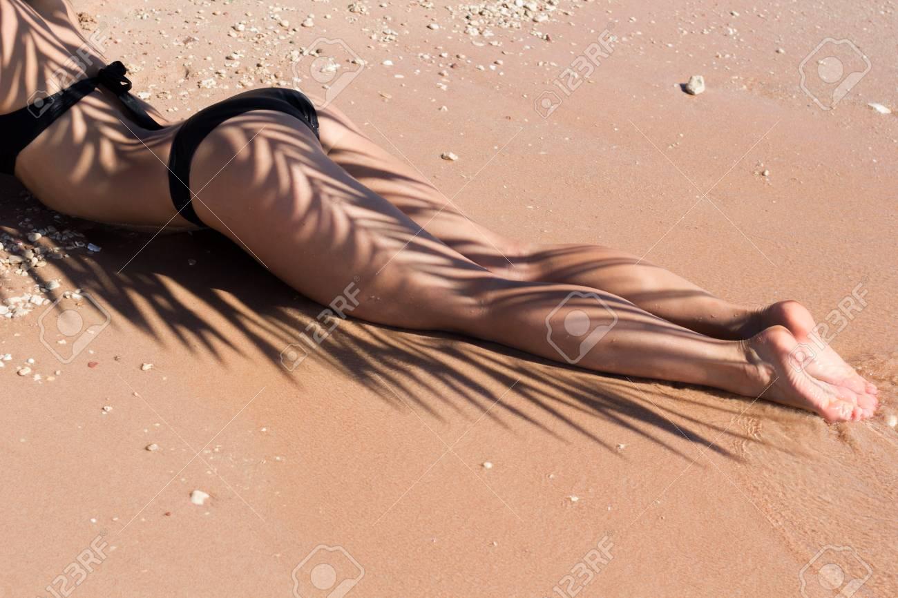 cac37cf01252b Beautiful luxury slim girl in a black bikini on the beach with palm leaf  shadow.