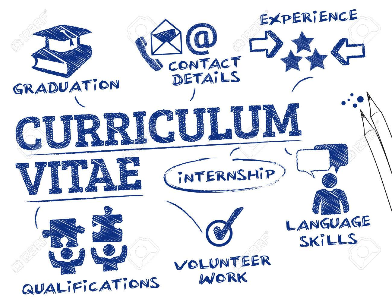 curriculum vitae concept chart with keywords and icons stock vector 50242599