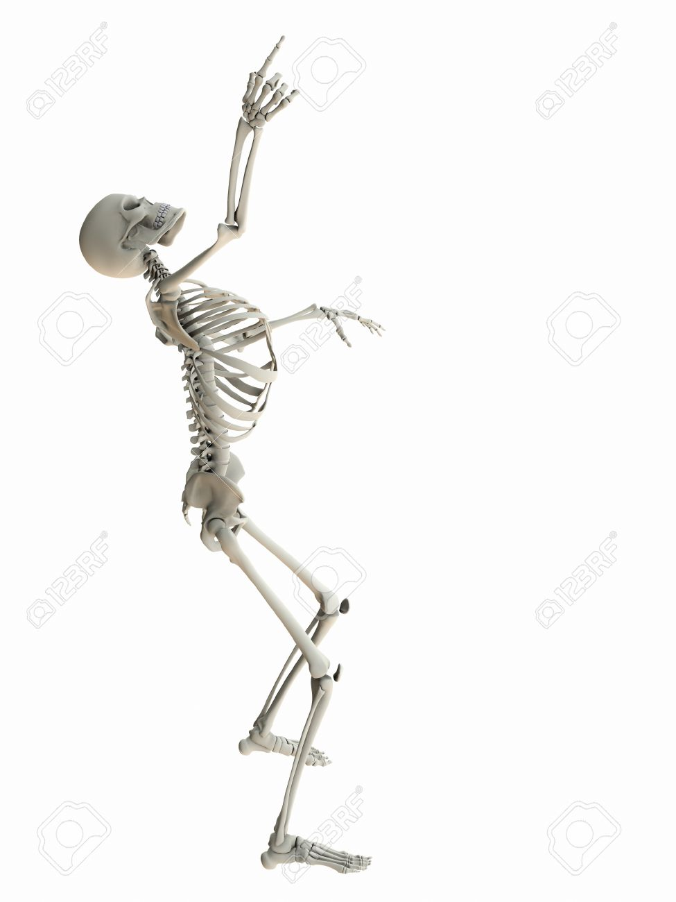 Isolated skeleton standing looking up pointing at white copy space. Stock Photo - 17086788