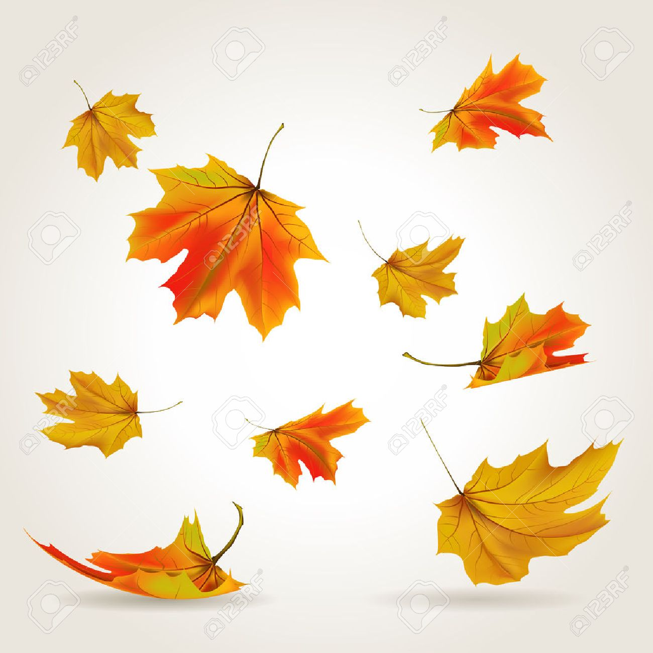 falling leaves set illustration royalty free cliparts vectors and