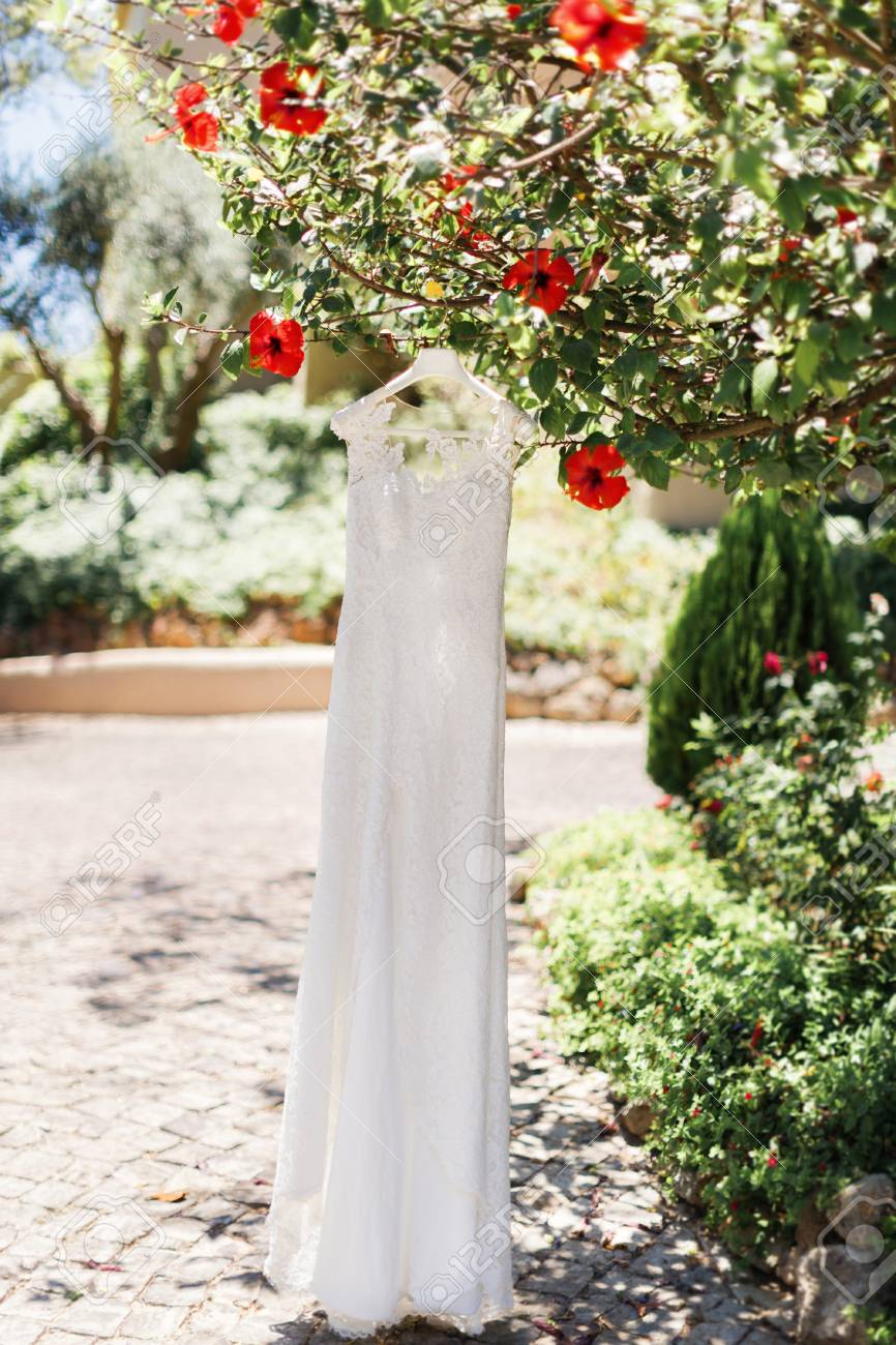 Beautiful Wedding Dress Hanging On Tree In Summer Garden Morning Preparation Red Flowers: Morning Garden Wedding Dresses At Websimilar.org