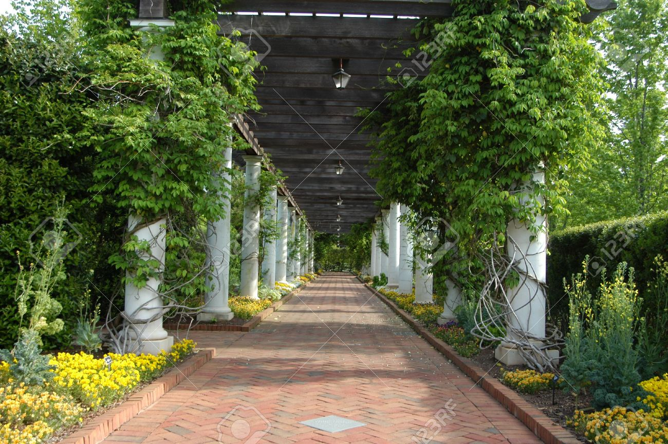 A Garden Walkway Covered In Vines And Other Natural Plants Stock ...