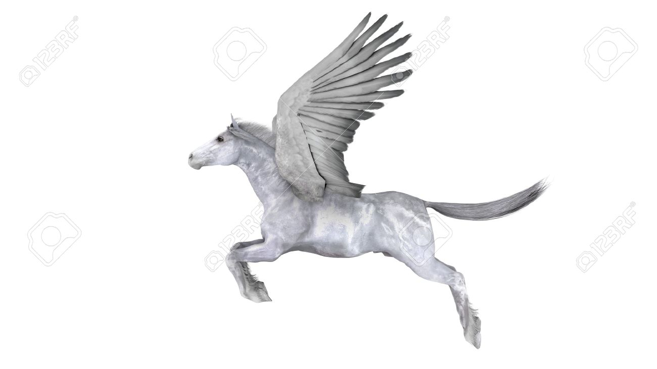 pegasus stock photo picture and royalty free image image 12976170