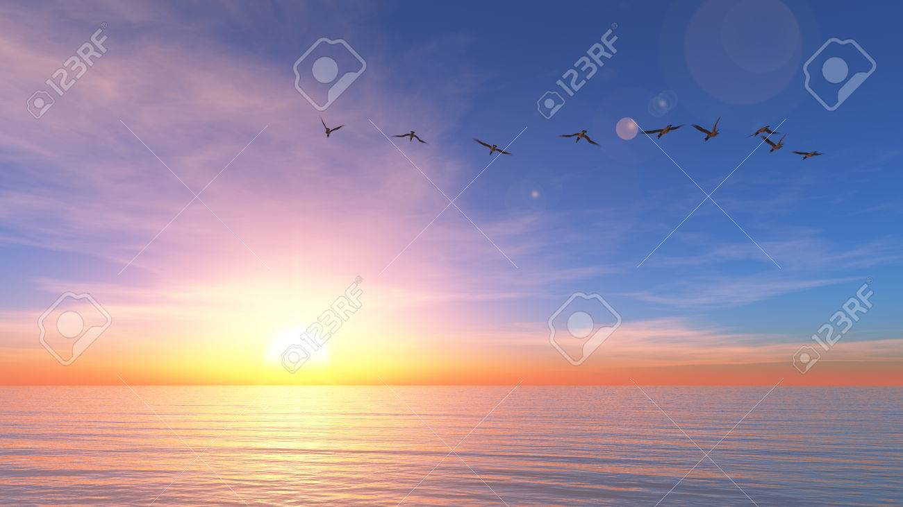 sun rise - 24322744