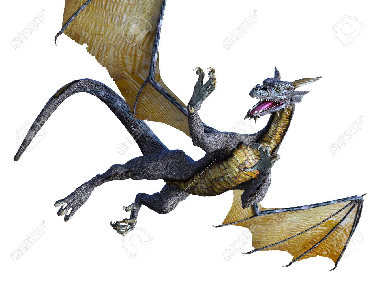 dragon - 47066538