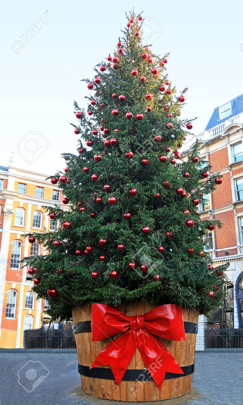 large christmas tree outside on public city square stock photo 15748873 - Large Christmas Tree