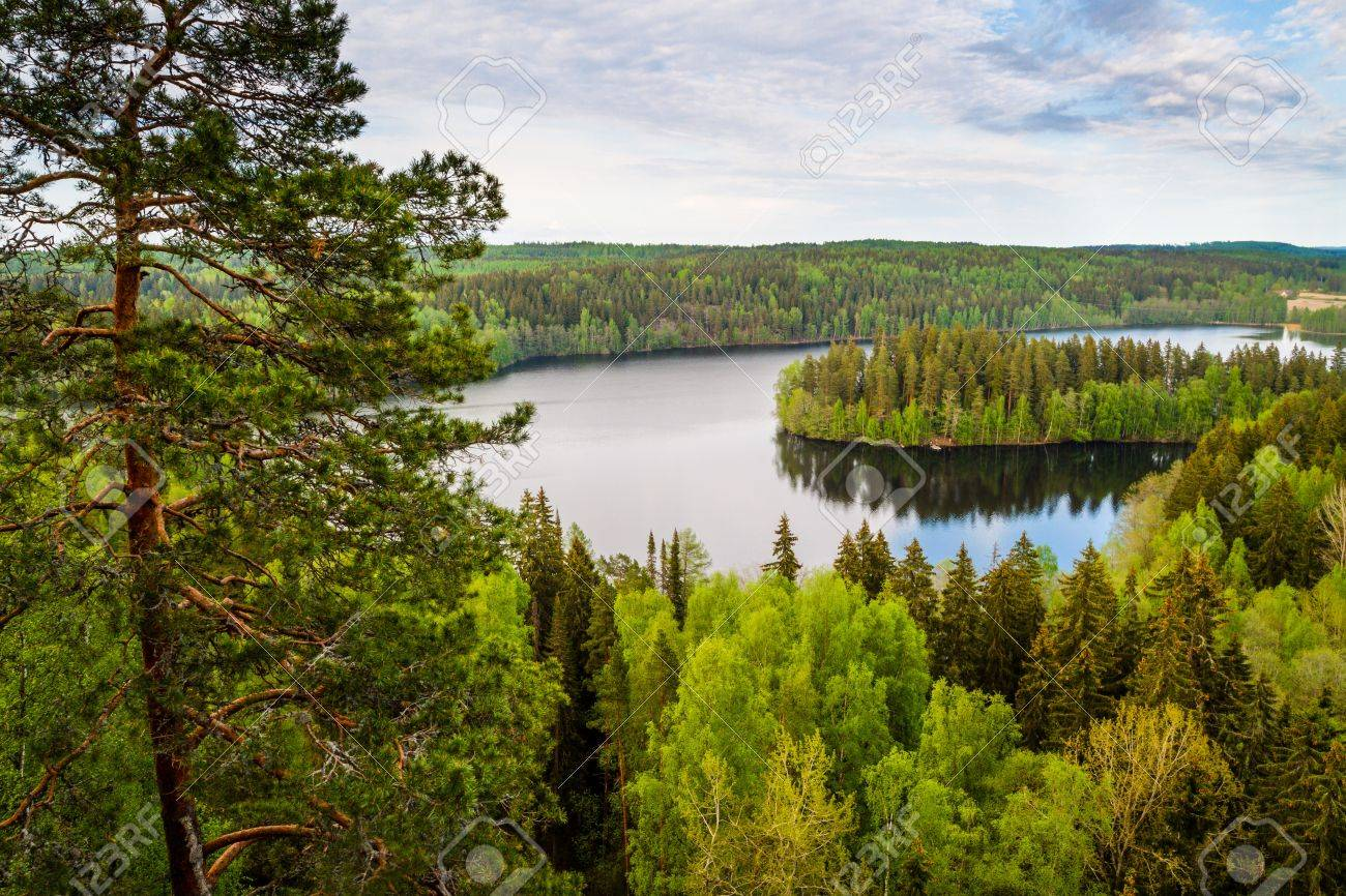 Lake view from the lookout tower of Aulanko in Finland Stock Photo - 20356322