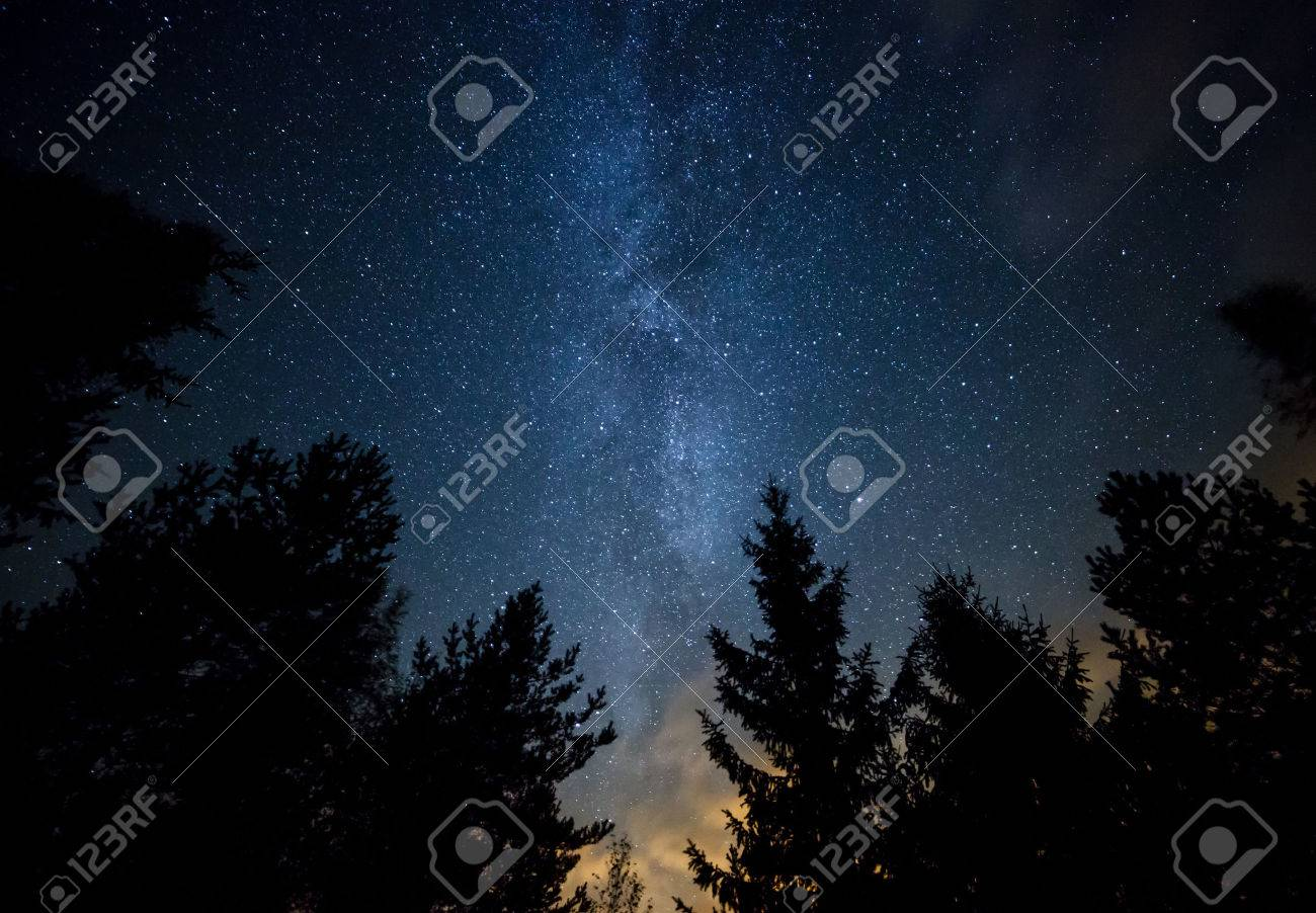Night sky with the Milky Way over the forest and trees. The last light of the setting Sun on the bottom of the image. Stock Photo - 32389081