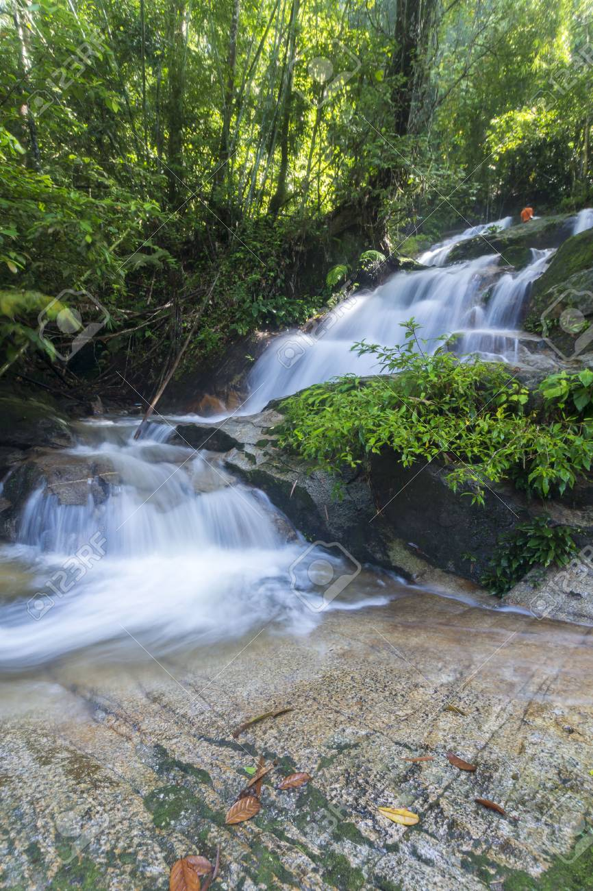 Nature Beautiful Rain Forest Waterfalls Stock Photo Picture And Royalty Free Image Image 61337486