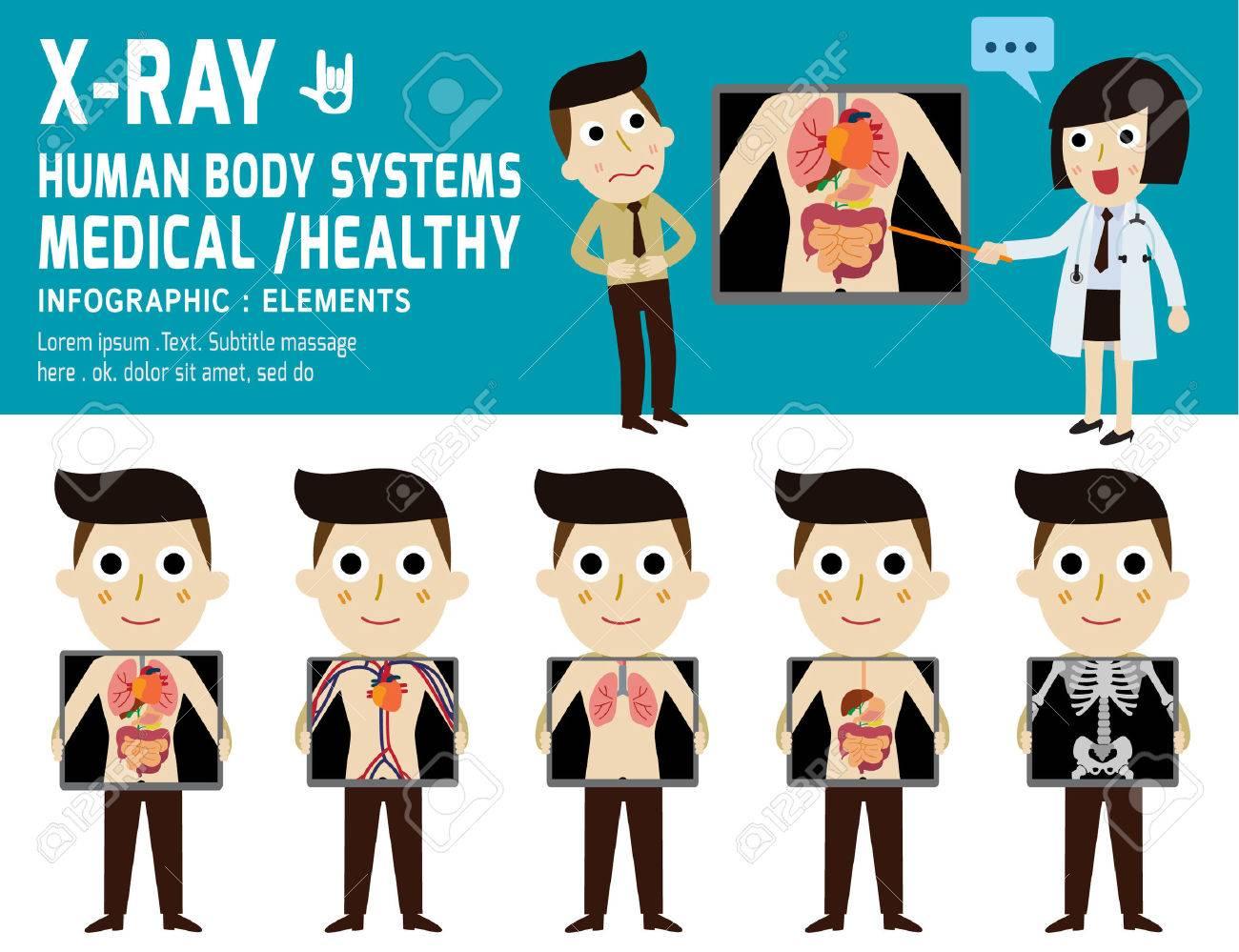 Nett Alle Körpersysteme Ideen - Menschliche Anatomie Bilder ...