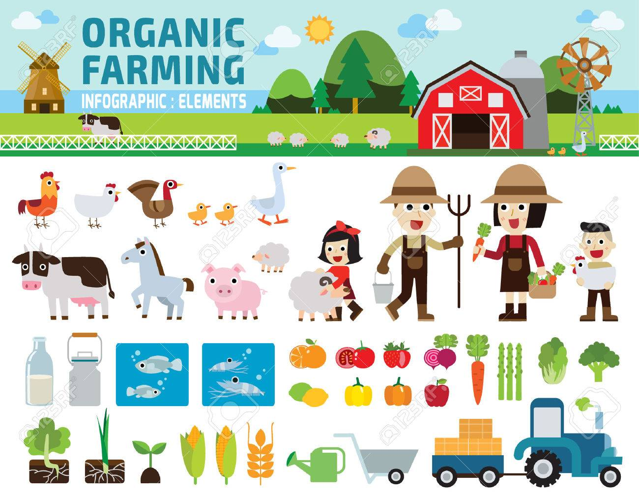 Agriculture and Farming.infographic elements concept.illustration - 52530006