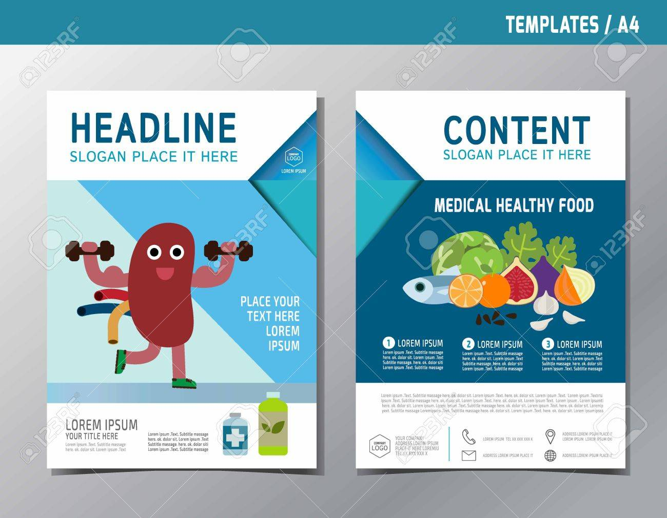 Kidney Infographic Brochure Template A Size Designflat Cute - Infographic brochure template