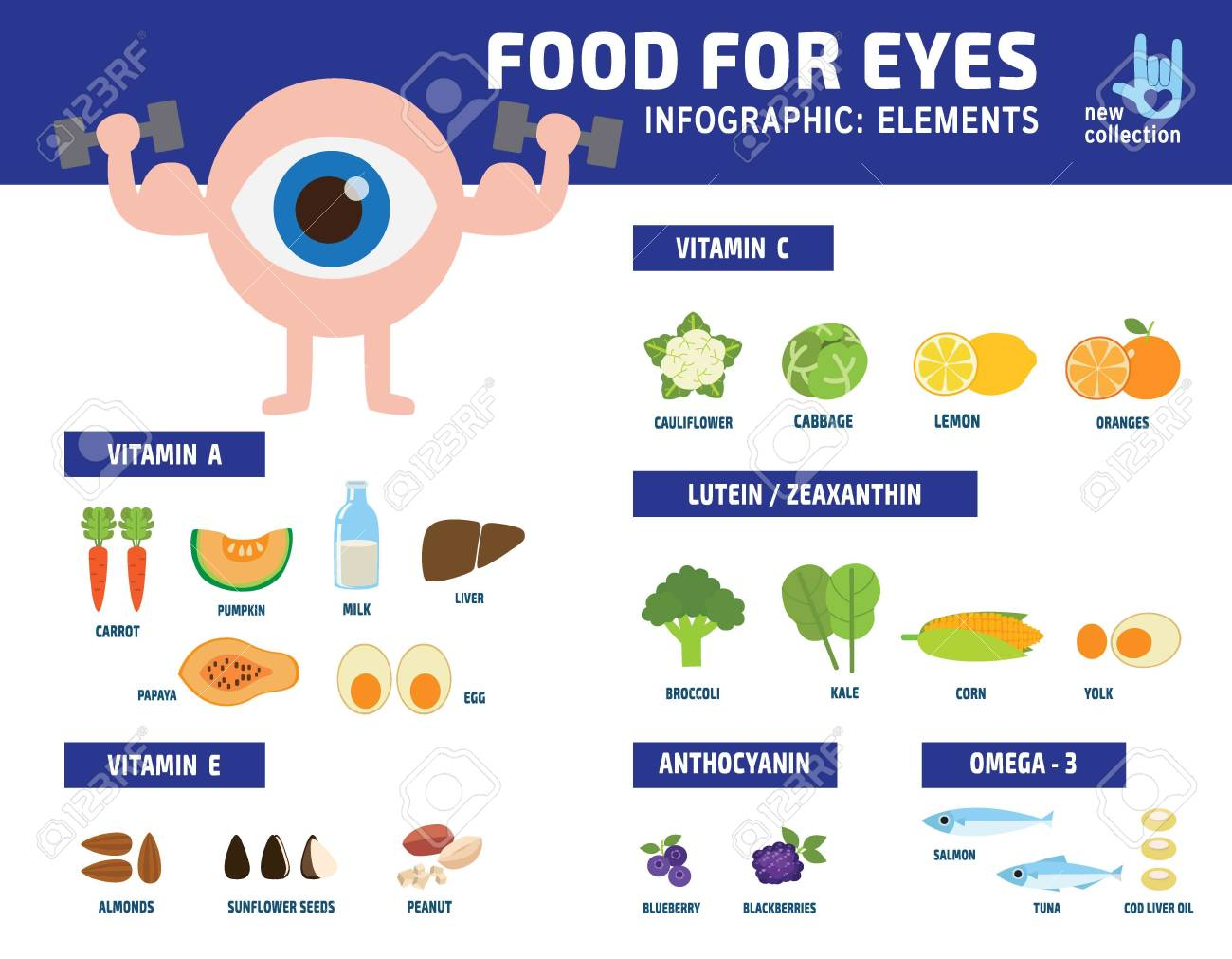 b9c6f3fbc5e Info graphics about foods that are good for eye health.information  infographic elementsvector healthy concept