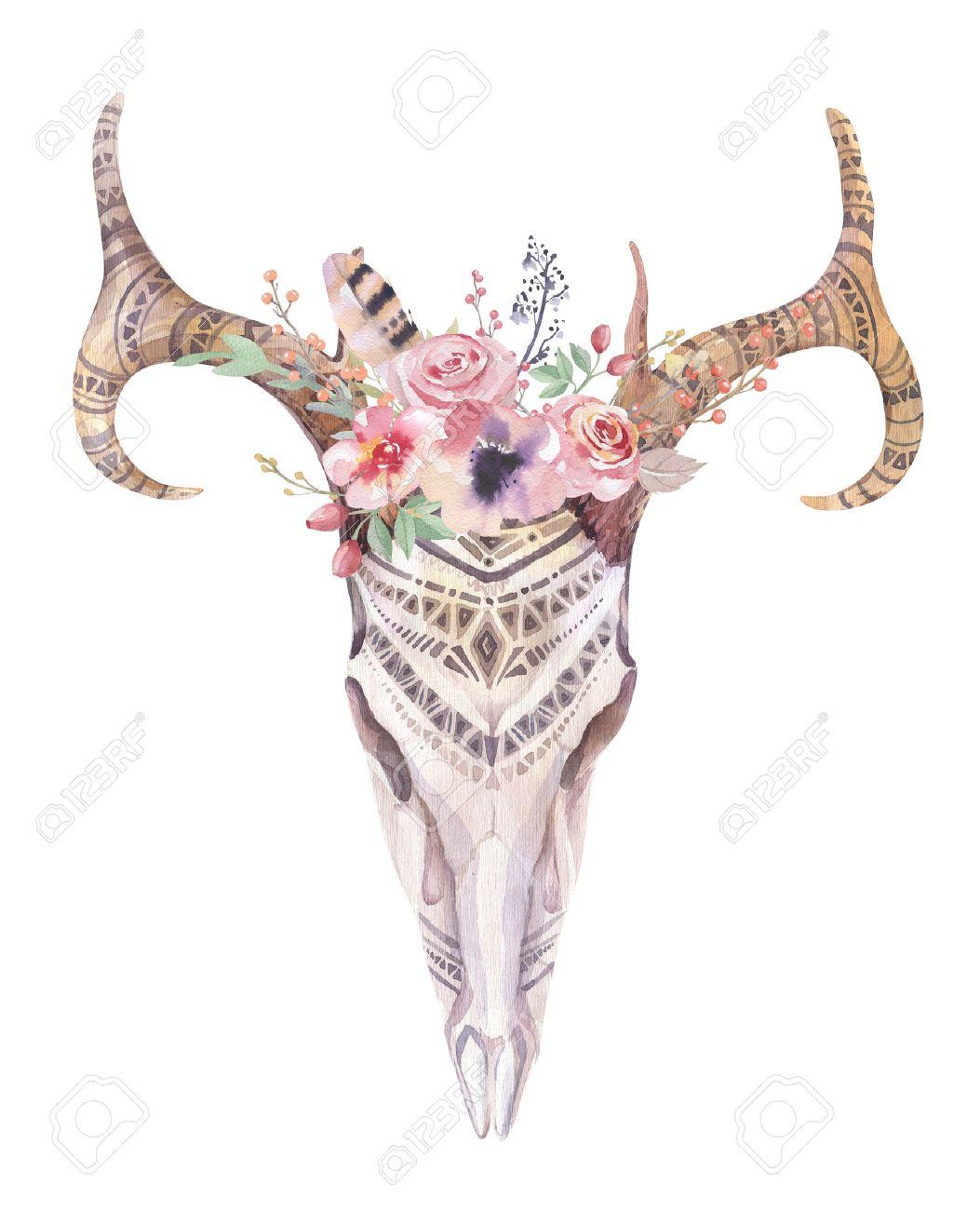 Watercolor bohemian deer skull. western mammals. watercolour ...