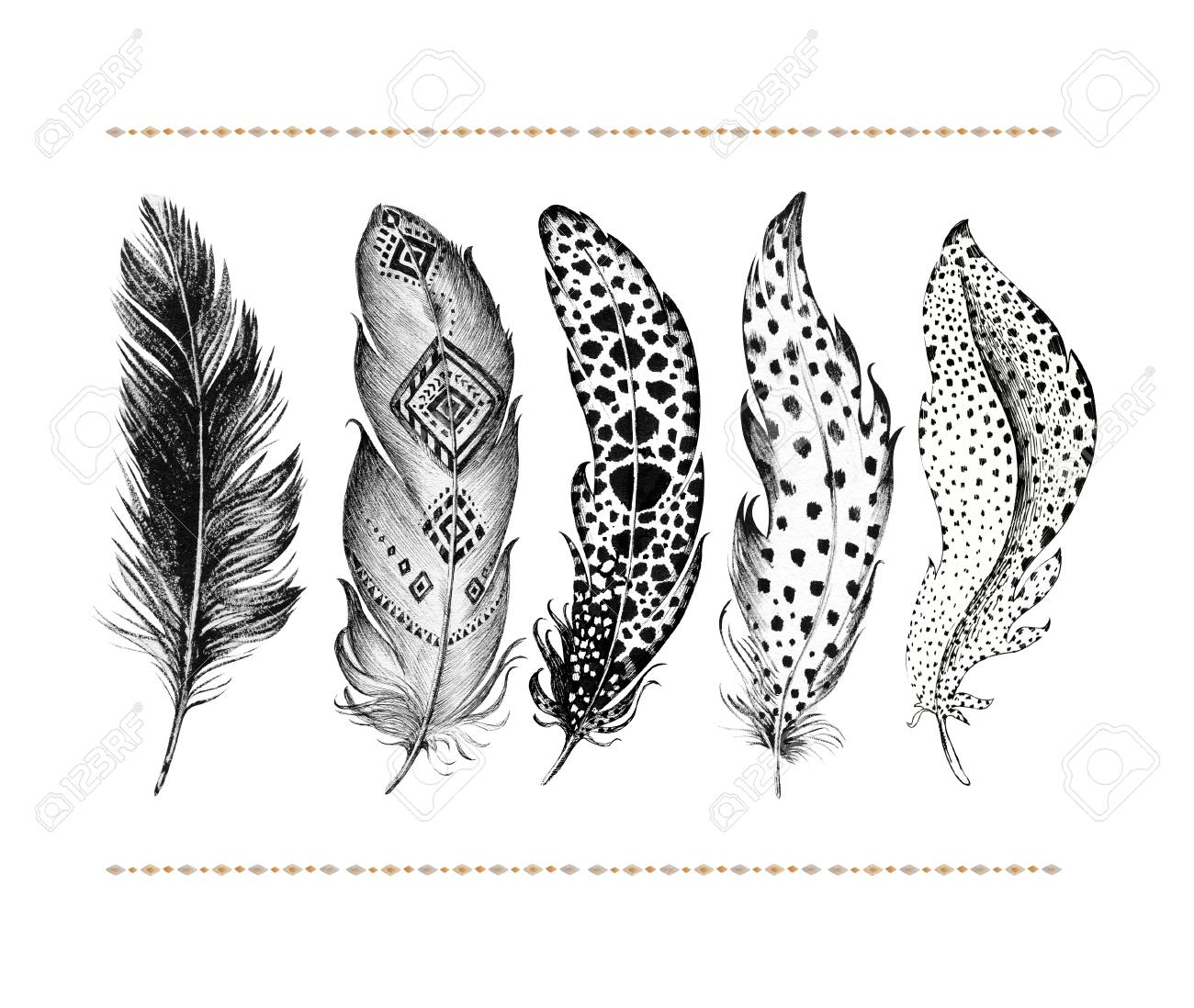 Set Of Hand Drawn Bird Feathers Isolated On White Background