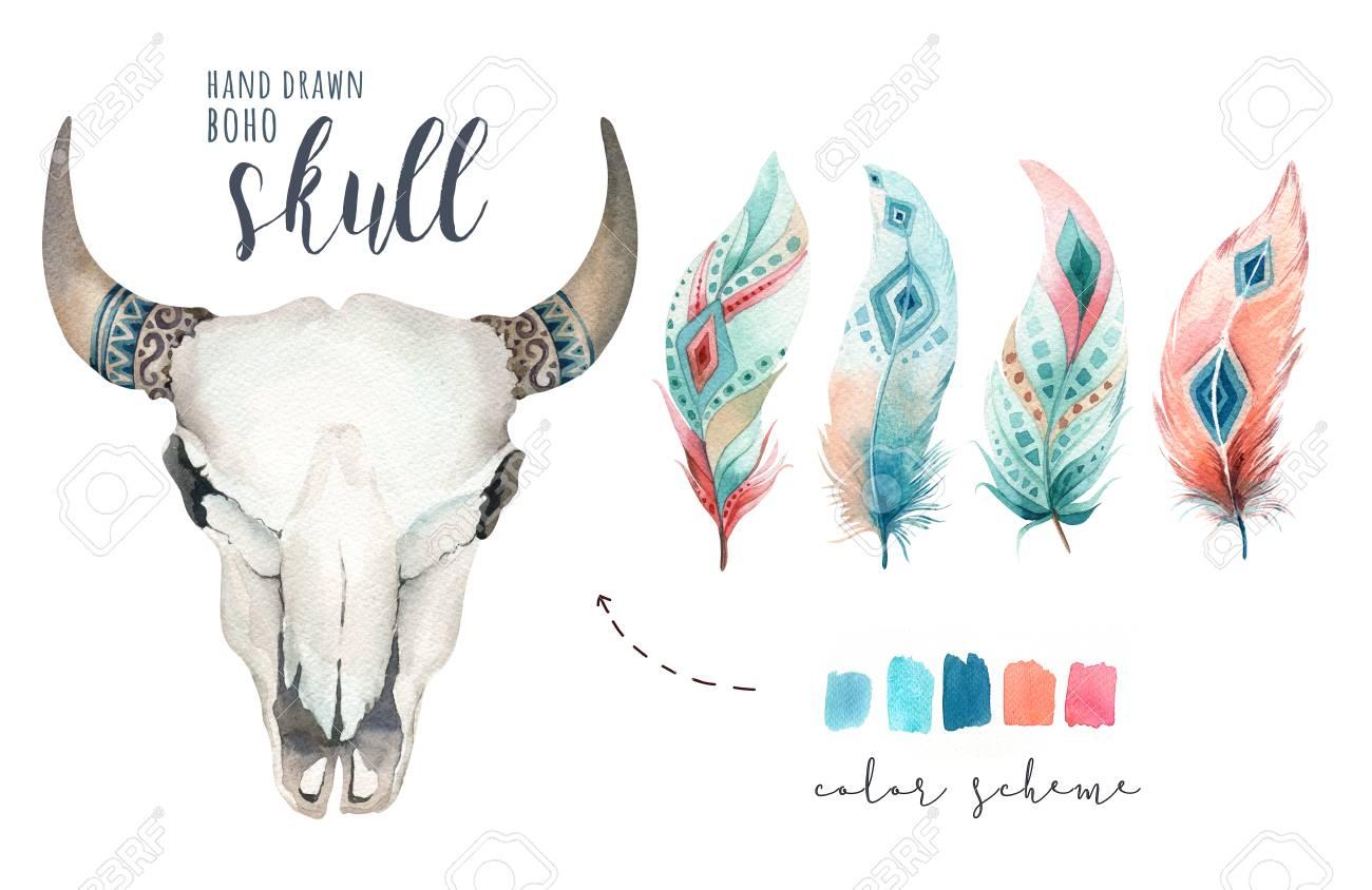 Watercolor Bohemian Cow Skull Western Mammals Watercolour Stock