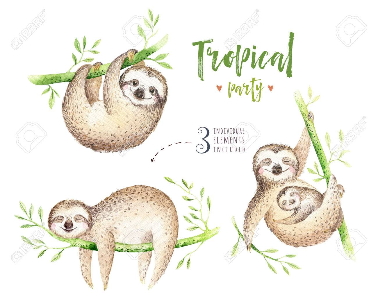 Baby Animals Sloth Nursery Isolated Painting Watercolor Boho Tropical Drawing Child Illustration