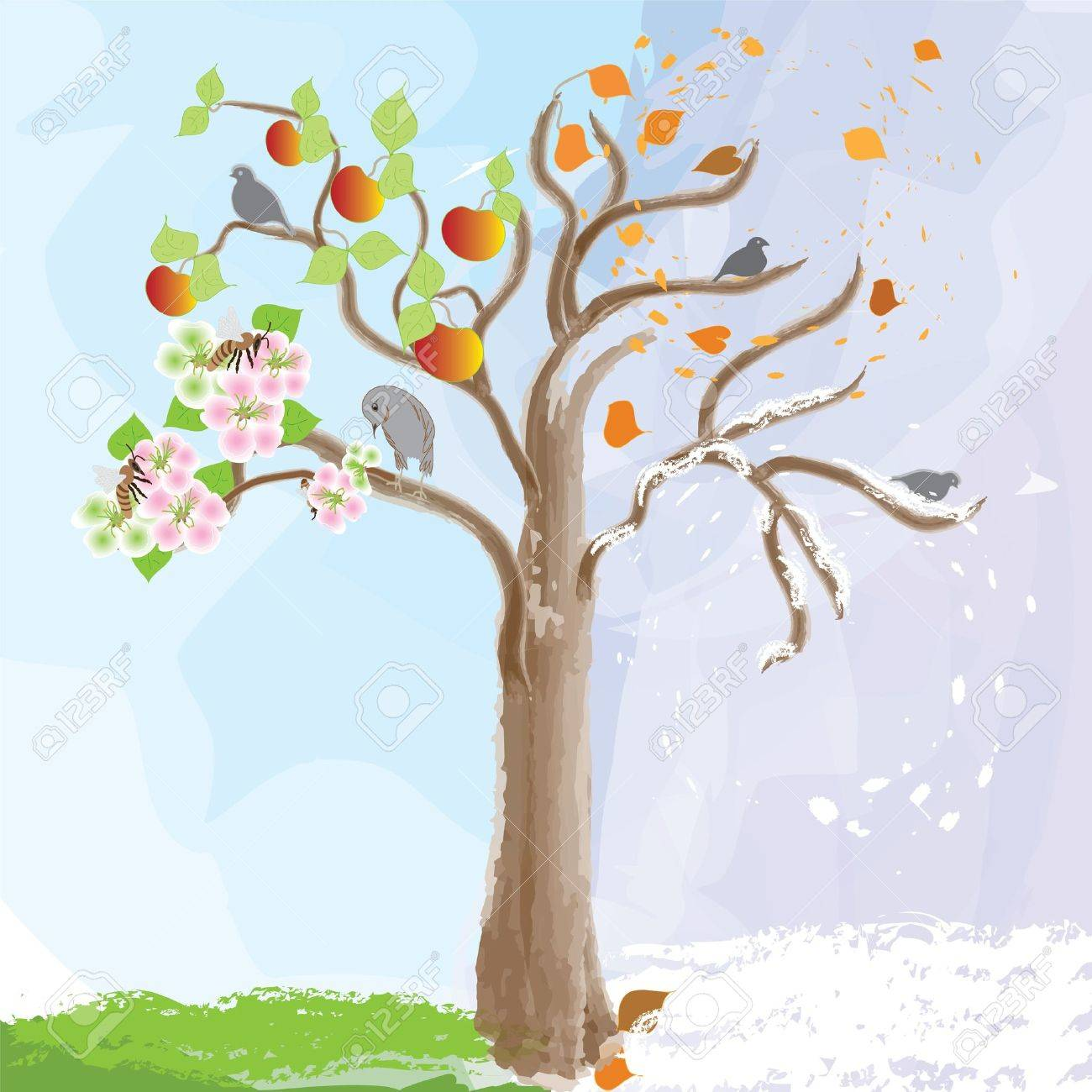 Abstract apple tree as symbol of  seasonal changes Stock Vector - 9147815