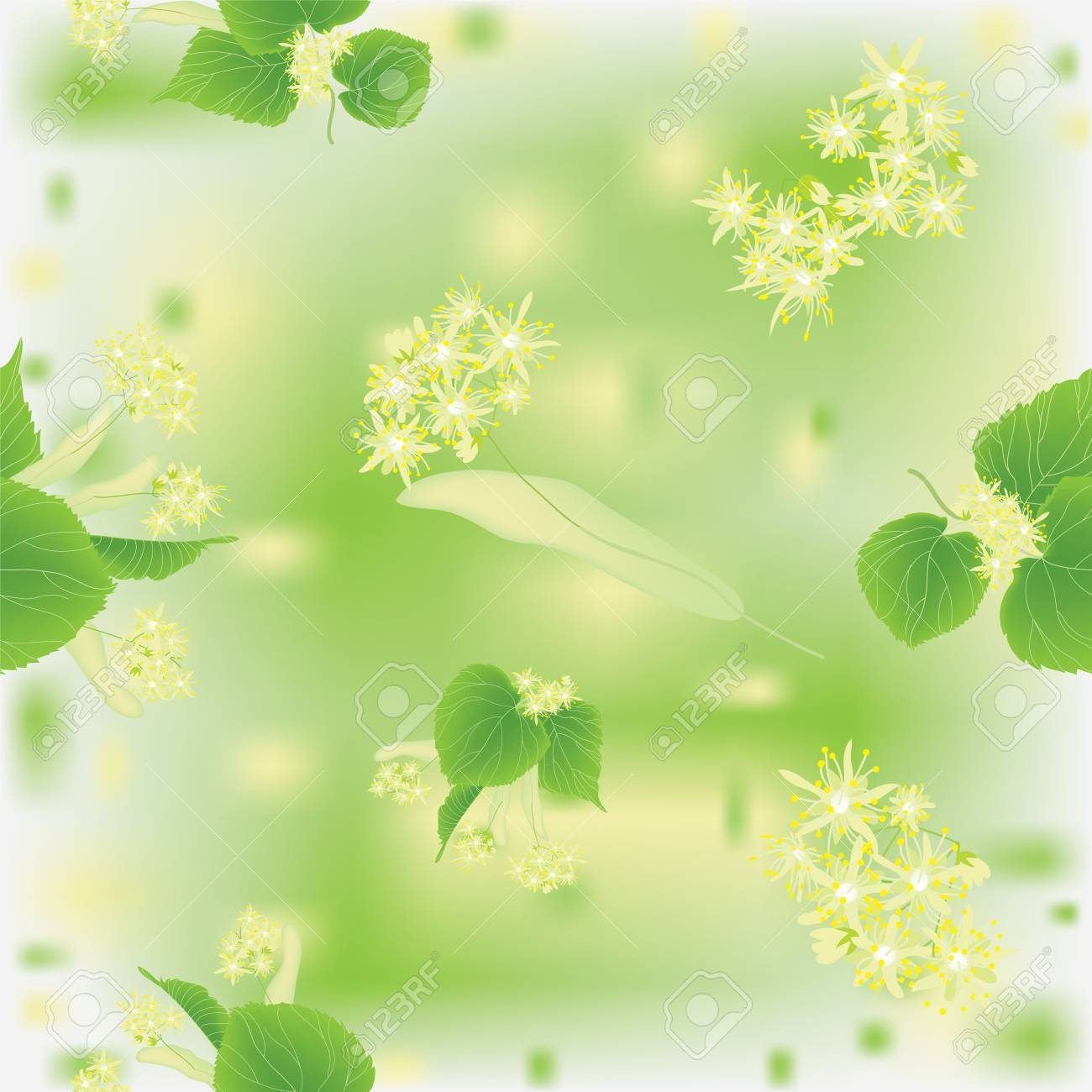 Seamless pattern with blossoming linden Stock Vector - 9837703